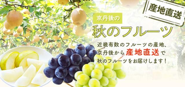 丹後王国,丹後,食,通販,食のみやこ,フルーツ,梨