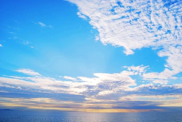 日本海の味覚